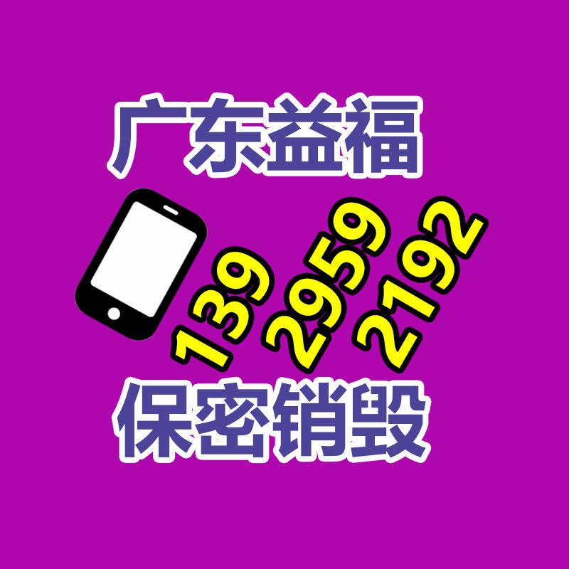 化妆品生产流水线 集装箱装车输送机 自动化装卸设备y2图2